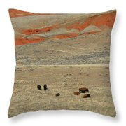 Wyoming Red Cliffs And Buffalo Throw Pillow