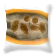 X-ray Of A Cocoa Pod Throw Pillow