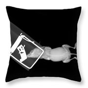 X-ray Of A Mouse Caught In A Trap Throw Pillow