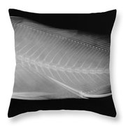 X-ray Of A Striped Sweetlips Throw Pillow