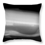 X-ray Of A Trout Throw Pillow