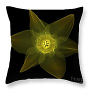 X-ray Of Daffodil Flower Throw Pillow