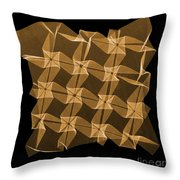 X-ray Of Mathematical Origami Throw Pillow