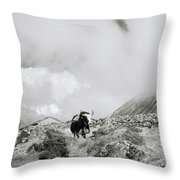 Yak In The Himalaya Throw Pillow