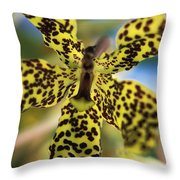 Yellow And Black Spotted Orchid Throw Pillow