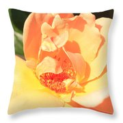 Yellow And Peach Rose Throw Pillow