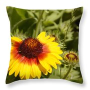 Yellow And Red In The Sunshine Throw Pillow
