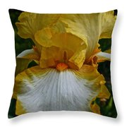 Yellow And White Iris Throw Pillow