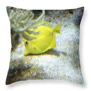 Yellow Angelfish Throw Pillow