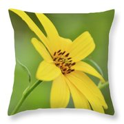 Yellow Artichoke Throw Pillow