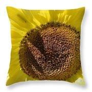 Yellow Autumn Sunflower Throw Pillow