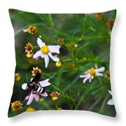 Yellow Banded Black Fly 1 Throw Pillow