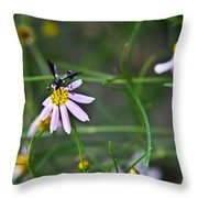 Yellow Banded Black Winged Fly 1 Throw Pillow