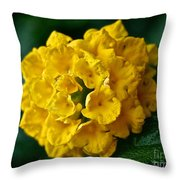 Yellow Blooms Throw Pillow