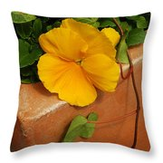 Yellow Blossom On Planter Throw Pillow