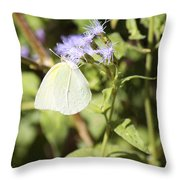Yellow Butterfly Feeding On Violet Flower Throw Pillow