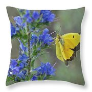 Yellow Cabbage Butterfly Throw Pillow