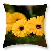 Yellow Chain Throw Pillow