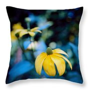 Yellow Cone Flower On Blue Background Throw Pillow by Marcio Faustino