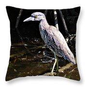Yellow Crowned Night Heron II Throw Pillow