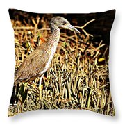 Yellow Crowned Night Heron Throw Pillow