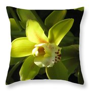 Yellow Cymbidium Throw Pillow
