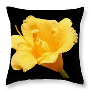 Yellow Day Lily On Black Throw Pillow