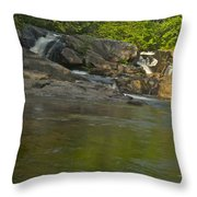 Yellow Dog Falls 4232 Throw Pillow by Michael Peychich