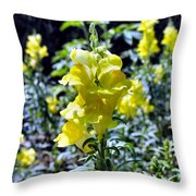 Yellow Dragons Throw Pillow