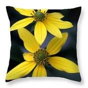 Yellow Duet Throw Pillow