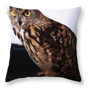 Yellow-eyed Owl Side Throw Pillow