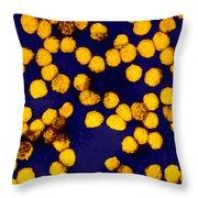 Yellow Fever Virus, Tem Throw Pillow