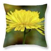 Yellow Flower And Bokeh Throw Pillow