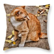 Yellow Kitty Throw Pillow
