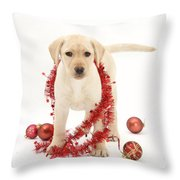 Yellow Lab Pup At Christmas Throw Pillow