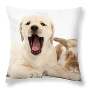 Yellow Lab Puppy With Rabbit Throw Pillow