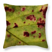 Yellow Leaf With Red Spots 2 Throw Pillow