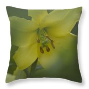 Yellow Lily Flower Throw Pillow