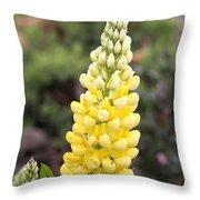 Yellow Lupine Throw Pillow