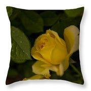 Yellow N Leaf Throw Pillow