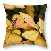 Yellow Petal Leaf With Sprig Throw Pillow