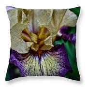 Yellow  Purple Iris Throw Pillow