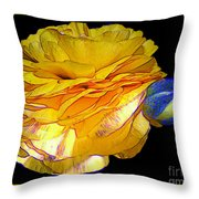 Yellow Ranunculus Flower With Blue Colored Edges Effect Throw Pillow