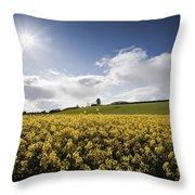 Yellow Rapeseed Field, Newgrange Throw Pillow