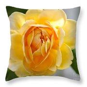 Yellow Rose Blooming Throw Pillow