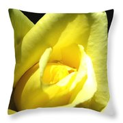Yellow Rose For Love Throw Pillow