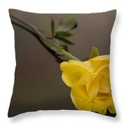 Yellow Rose Of Friendship Throw Pillow