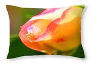 Yellow Rose Tipped In Pink Throw Pillow