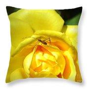 Yellow Rose Visitor Throw Pillow
