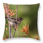 Yellow-rumped Warbler - Peaceful Pastels Throw Pillow